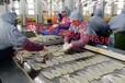 出国打工正规工签澳大利亚丹麦瑞典等普工农场建筑工厂等月薪三万五起