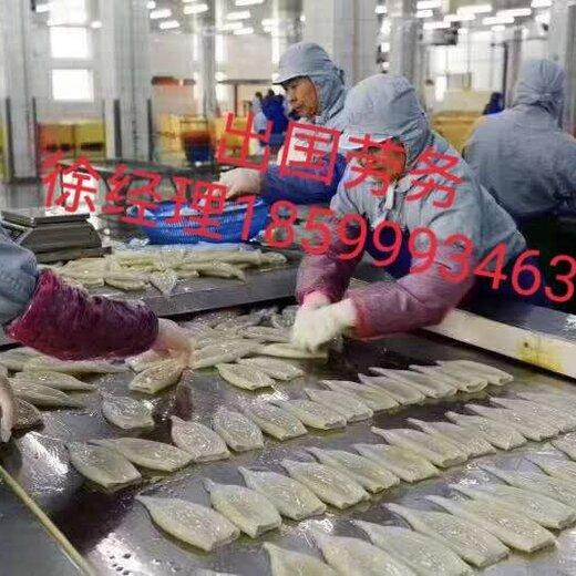 出國勞務辦理流程發達國家雇主保簽鋼筋工木工瓦工等