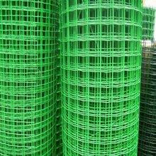 金栏筛网丝网厂家——冲孔网/荷兰网/铁丝网/金属网均可定做图片