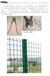 养鸡场鸡舍家庭养殖专用散养鸡围栏,美观大方,成本低廉