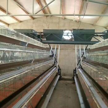 河北鸡笼子工厂