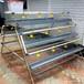 石家庄工厂养殖蛋鸡笼出口三层阶梯式四门合理设计养鸡笼子