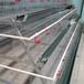 优质多层阶梯式钢丝网养殖笼蛋鸡笼石家庄生产