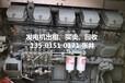 深圳南山区发电机出租公司,深圳南山区发电机保养厂家