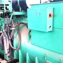 宜黄县哪里有发电机租赁_宜黄县哪里有发电机出租