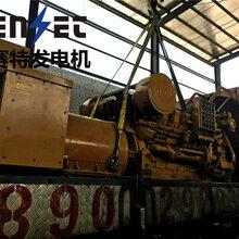 漳县柴油发电机出租