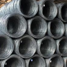 供甘肅高速線材和蘭州普線及蘭州線材廠家圖片