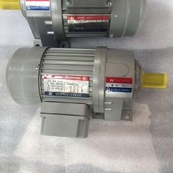台湾东力电机IPL22-200-50S3横移电机停车电机有现货