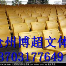 伸缩看台座椅专业生产厂家图片