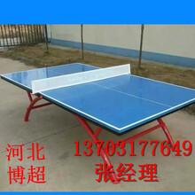 体育馆乒乓球台生产厂家图片
