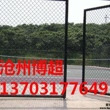 体育场围网生产厂家图片