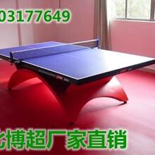 大彩虹乒乓球台生产厂家图片