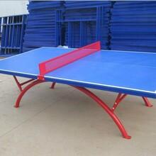 乒乓球台生产厂家图片