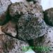 河北誠鑫廠家供應紅色火山巖濾料火山石栽培基質火山石