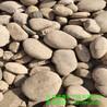 河北诚鑫供应水处理鹅卵石变压器滤油鹅卵石