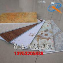 80型PVC仿大理石板材生產設備UV板生產線石塑板材設備首選青島新銳塑機圖片