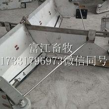 清粪设备24小时自定清粪机价格猪场自动清粪机多少钱