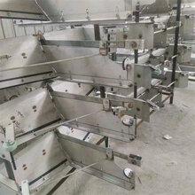 豬舍智能刮糞機自動刮糞機采購不銹鋼刮糞板廠家