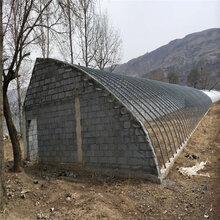农业大棚生产建设一亩大棚生产蔬菜大棚养殖棚建设