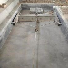 進口電機自動刮糞機不銹鋼刮糞板清糞設備豬場刮糞機價格