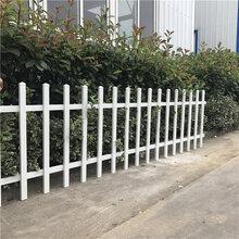 保定市政护栏网安国隔离带护栏