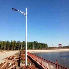 北京道路亮化路灯厂家图片