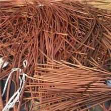 无锡市最新电缆回收回收厂家市场价格图片