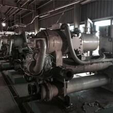 全塘鎮結晶器銅管回收(遼寧新聞)圖片