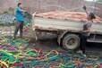 东台特种电缆线回收-今天回收价格有保障
