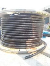 云龙区铝芯电缆回收-价格多少钱一米期待合作图片