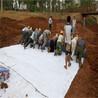 厂家供应土工布工业路面保湿养护长丝土工布可定制