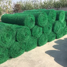 三维植被网厂东森游戏主管植草护坡用图片