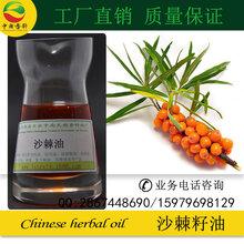 现货供应天然植物精油沙棘籽油药用香精