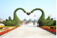 2019江蘇創意仿真綠雕花壇工藝品藝術全國銷售廠家