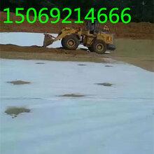 垃圾场铺设知道老李步5000g防水毯第�锒�步防水板第三步长丝土工布图片