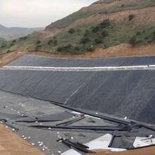 厂家供应防水板隧道复合防水板沼气池自粘防水板图片