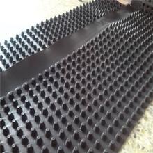 車庫高密度排水板廠家200克土工布hdpe屋頂排水板圖片