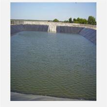 隧道吊帶EVA防水板地鐵涵洞防水板廠家圖片