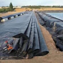 供應甘肅白銀0.6mm糙面土工膜水庫大壩土工膜圖片