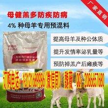 北京利斯特品牌母羊饲料,专业母羊饲料生产批发