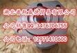 現貨油泵A10VSO28DFR1/31R-PPA12N00