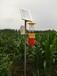 農用殺蟲燈_農用殺蟲燈燈頭