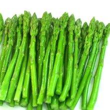 芦笋种植时间和方法优质芦笋种苗批发量大优惠