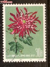 邮票在贵阳怎么鉴定出手图片