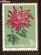 贵州盘州邮票免费鉴定交易图片