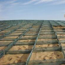 阿里治沙防沙網HDPE固沙網阻沙柵欄可定制防沙網供應廠家圖片