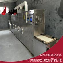 微波坚果干燥设备丨坚果烘干机图片