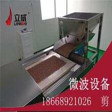 燕麦片微波烘干熟化设备图片