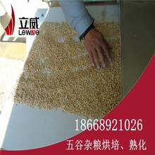 微波粮食干燥烘干设备厂家图片