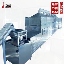 隧道式麦麸微波烘干设备图片